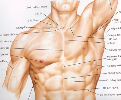 Phẫu thuật nâng ngực cho nam giới bằng phương pháp đặt túi ngực