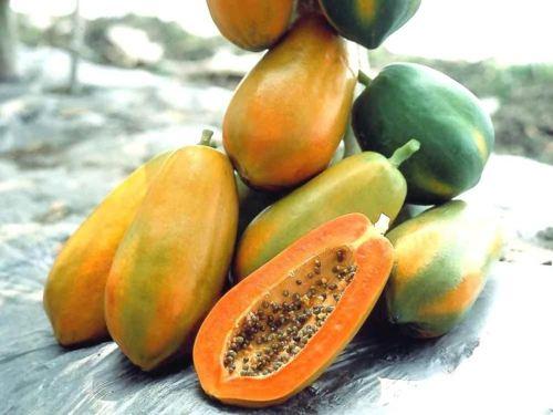 Làm ngực to hơn hiệu quả tại nhà chỉ bằng trái cây
