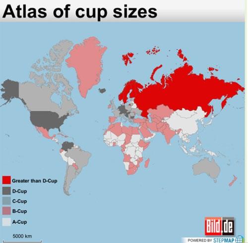 Phụ nữ Châu Á và cúp ngực lép nhất thế giới 11